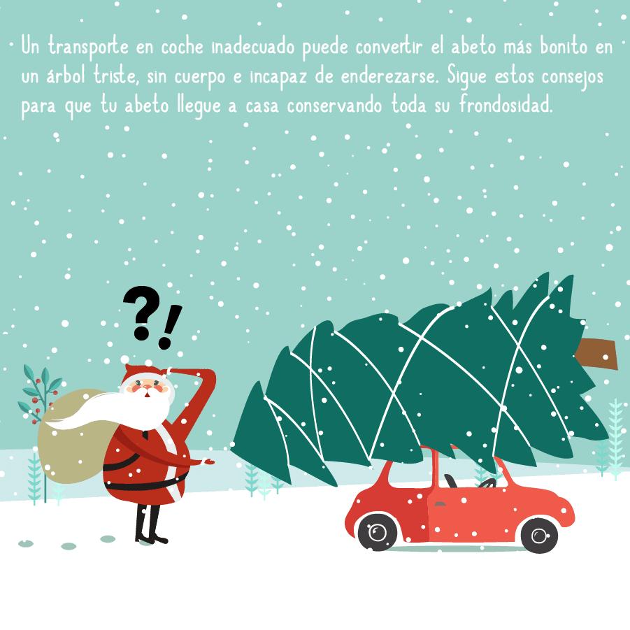 Cómo transportar un árbol de Navidad en coche 3